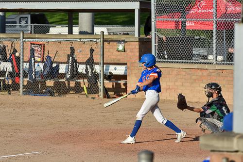 sdg media photographe sportif tournoi provincial bantam baseball orioles saint-jerome49